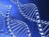 Региональная медико-генетическая консультация