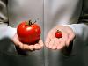 Комиссия Ран опровергнет теорию о вреде ГМО
