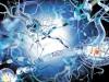 Рассеянный склероз может быть побежден в ближайшие 10 лет