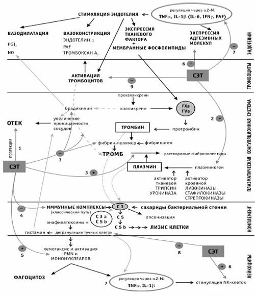 Схема воздействия системной