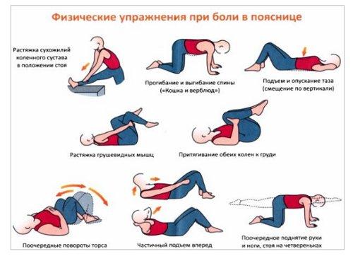 Упражнения для позвоночника в домашних условиях в картинках